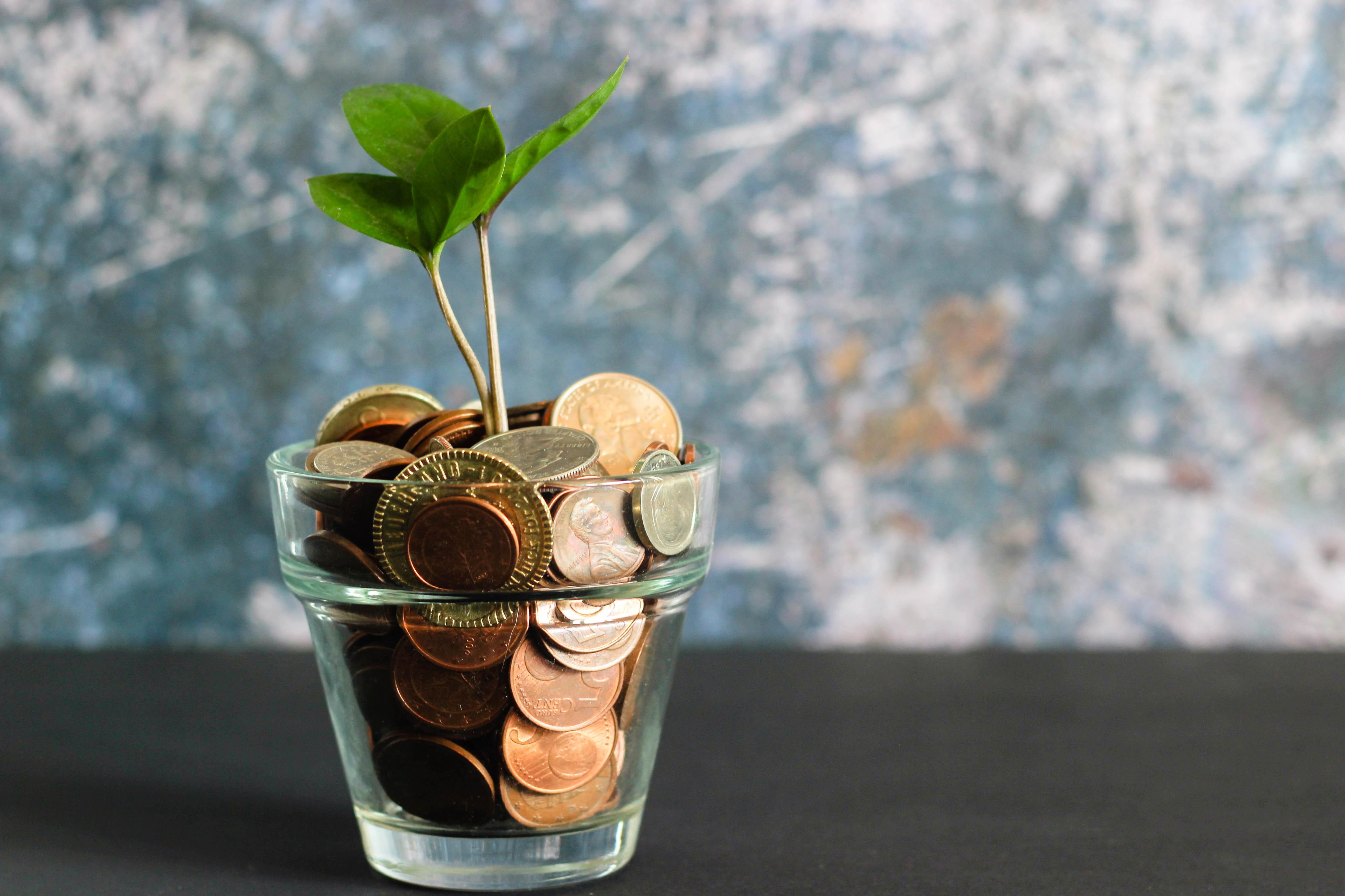pension fund savings growth